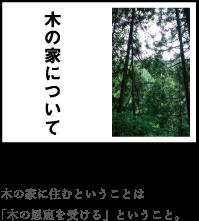 木の家について